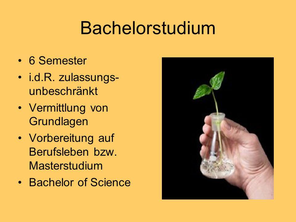 Bachelorstudium 6 Semester i.d.R. zulassungs-unbeschränkt