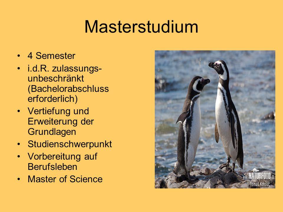 Masterstudium 4 Semester