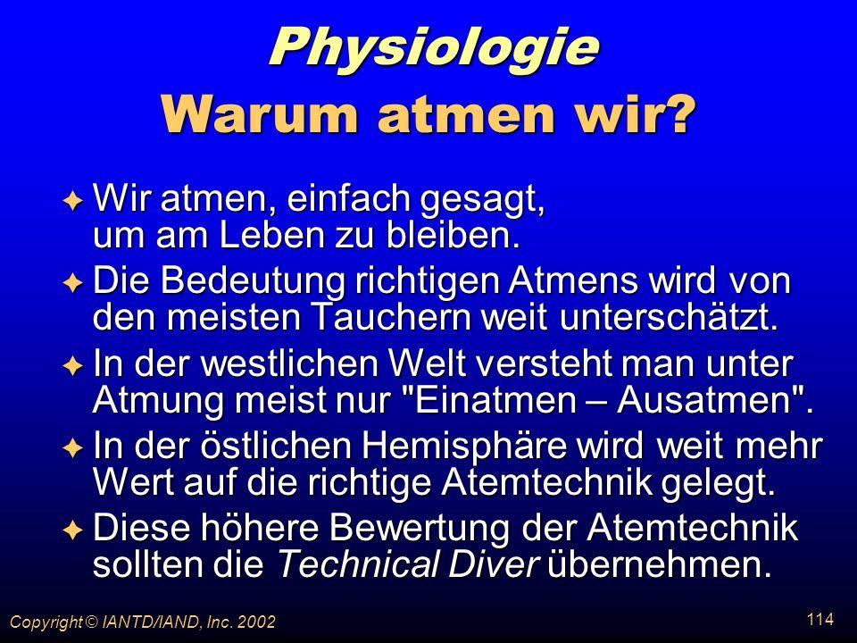 Physiologie Warum atmen wir