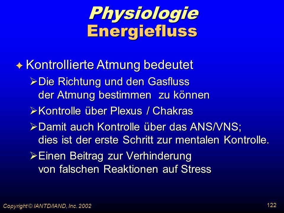 Physiologie Energiefluss Kontrollierte Atmung bedeutet