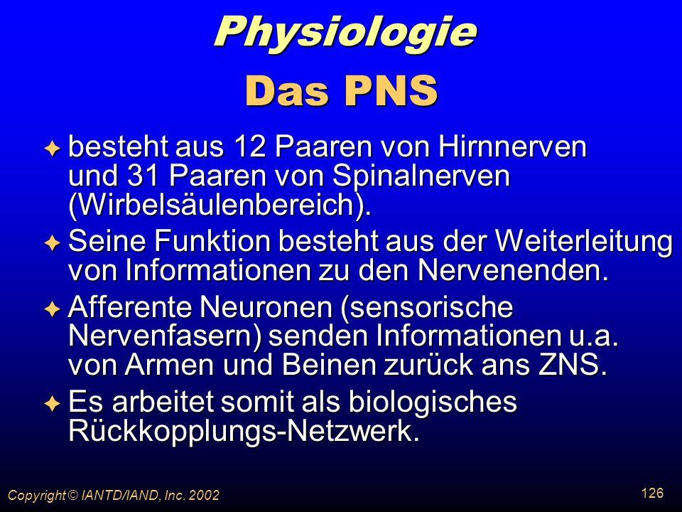 Physiologie Das PNS. besteht aus 12 Paaren von Hirnnerven und 31 Paaren von Spinalnerven (Wirbelsäulenbereich).