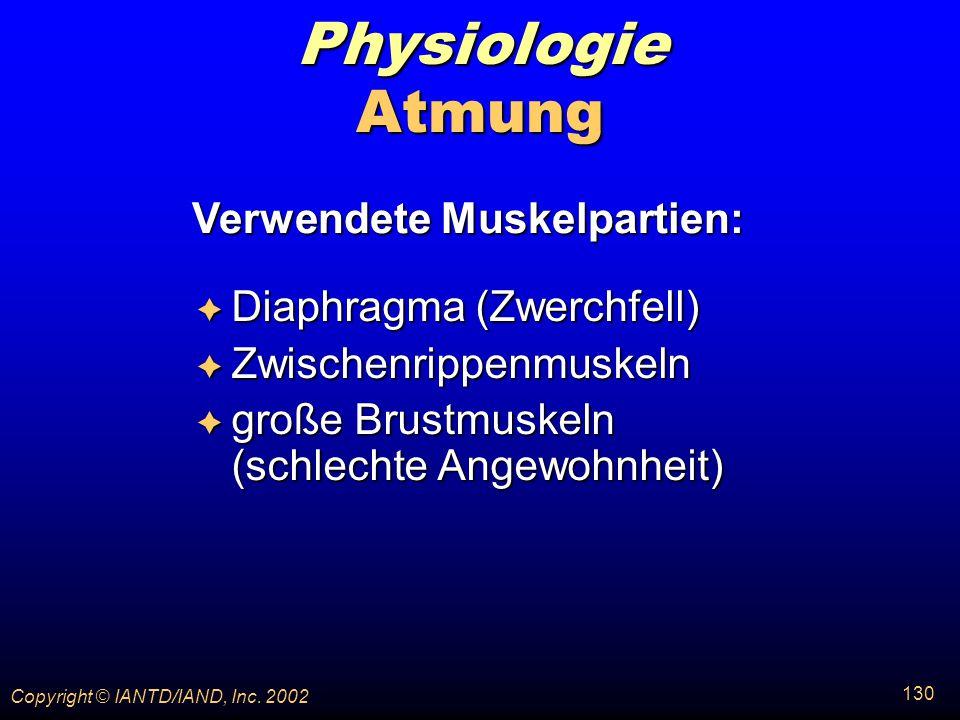 Verwendete Muskelpartien: