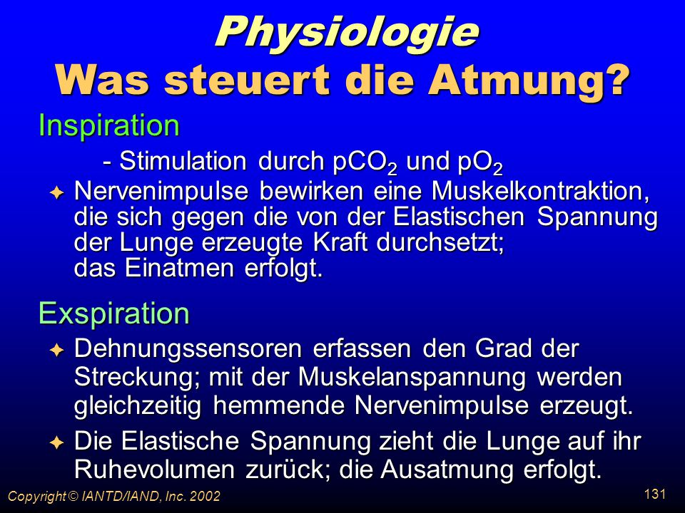 - Stimulation durch pCO2 und pO2