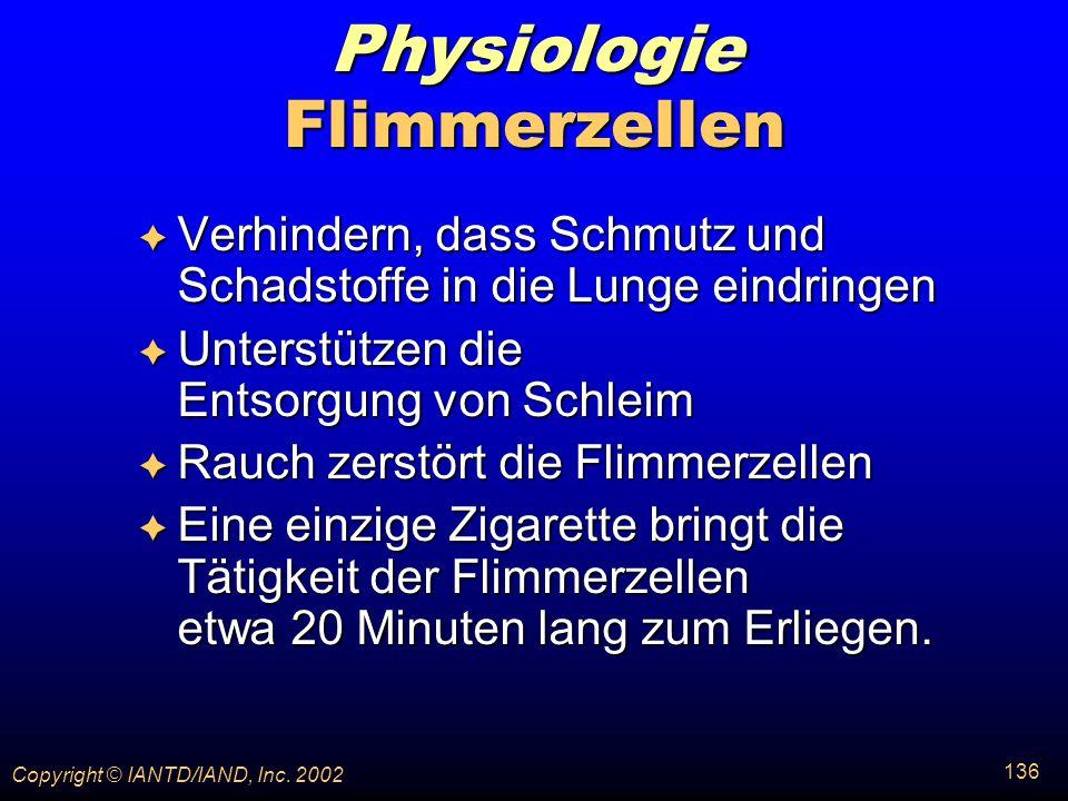 Physiologie Flimmerzellen