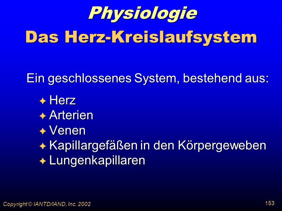 Das Herz-Kreislaufsystem
