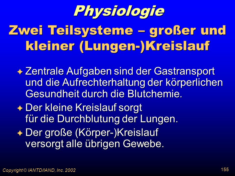 Zwei Teilsysteme – großer und kleiner (Lungen-)Kreislauf