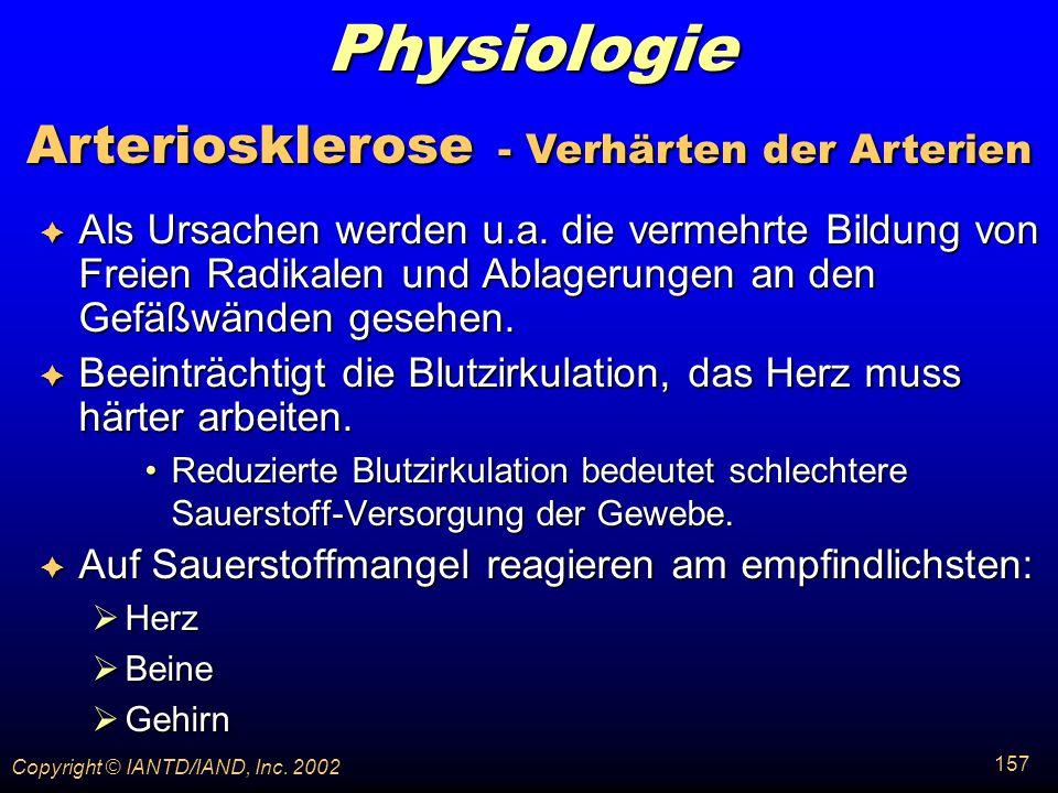 Arteriosklerose - Verhärten der Arterien