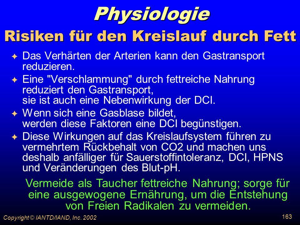 Risiken für den Kreislauf durch Fett