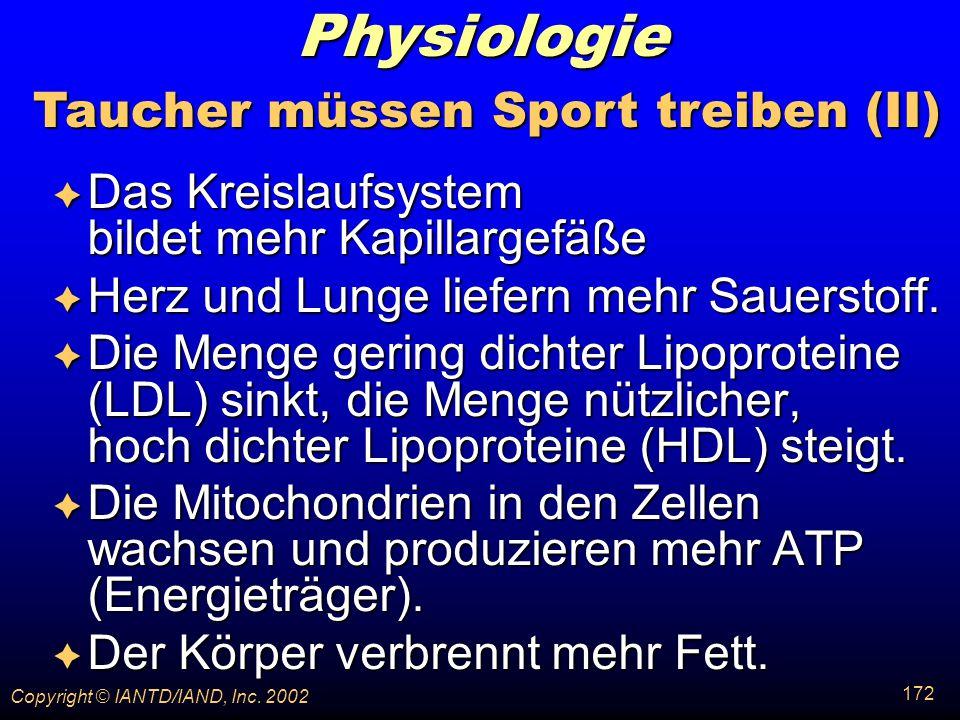 Taucher müssen Sport treiben (II)
