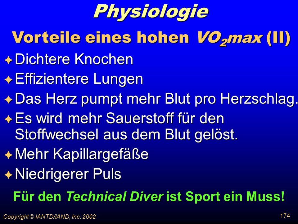 Physiologie Vorteile eines hohen VO2max (II) Dichtere Knochen