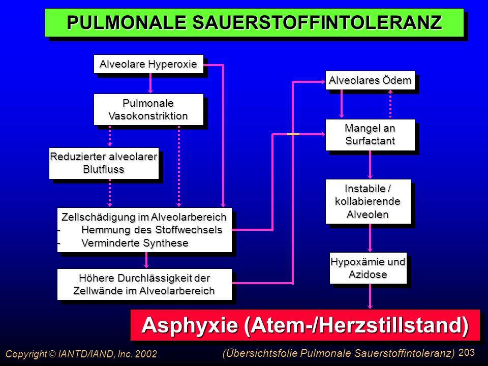 PULMONALE SAUERSTOFFINTOLERANZ Asphyxie (Atem-/Herzstillstand)