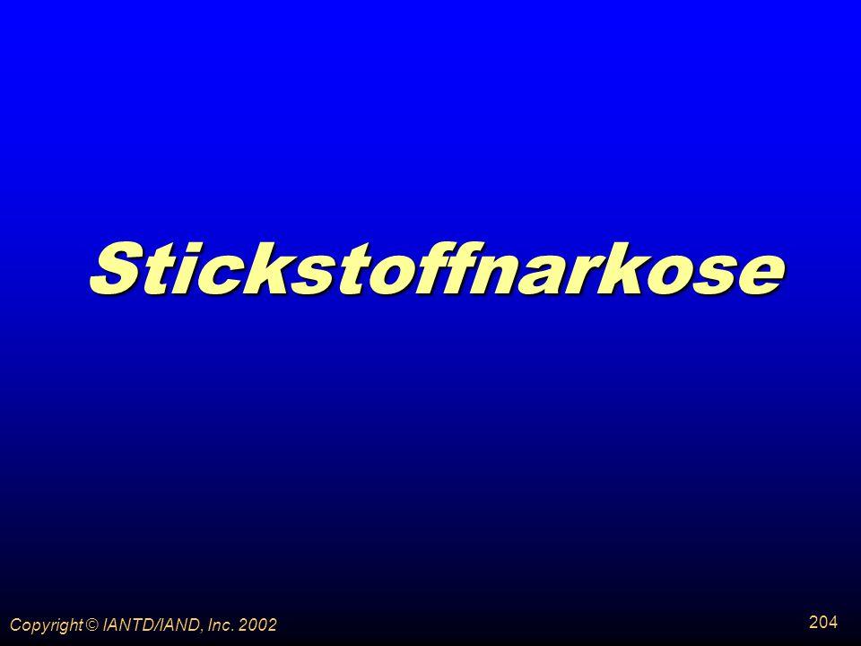 Stickstoffnarkose Copyright © IANTD/IAND, Inc. 2002