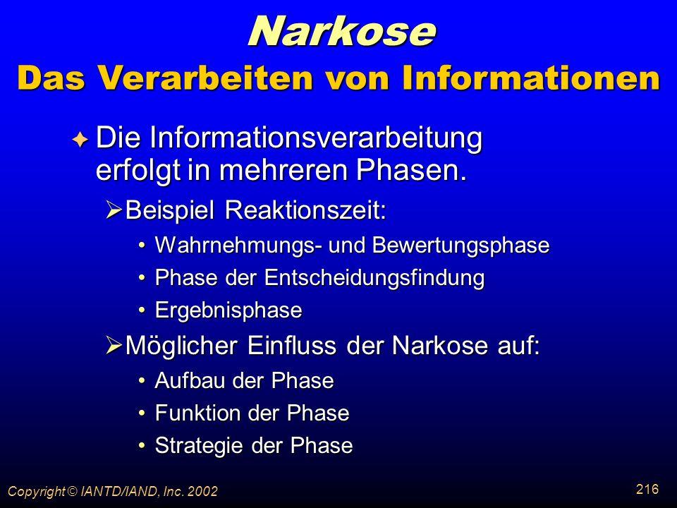 Das Verarbeiten von Informationen
