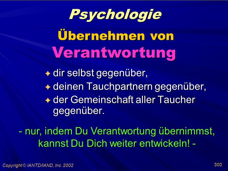 Verantwortung Psychologie Übernehmen von dir selbst gegenüber,