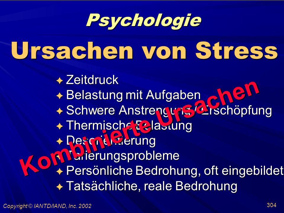 Kombinierte Ursachen Psychologie Ursachen von Stress Zeitdruck
