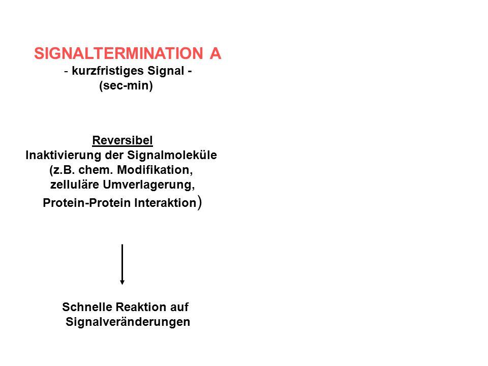 SIGNALTERMINATION A kurzfristiges Signal - (sec-min) Reversibel
