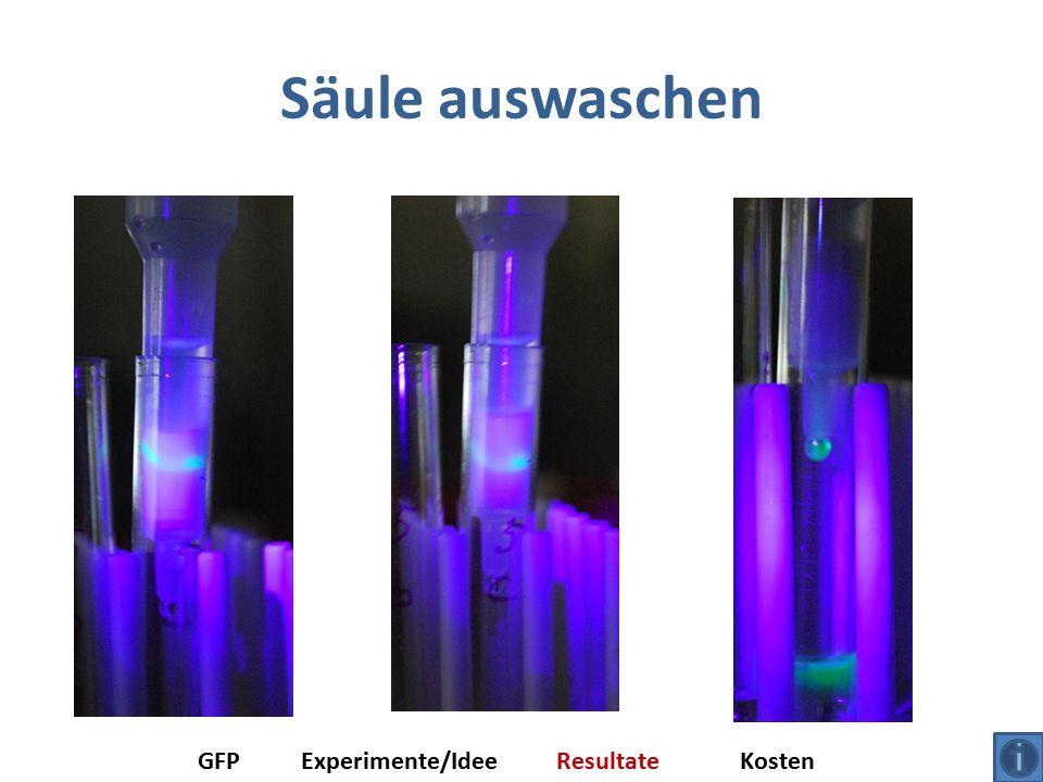 Säule auswaschen GFP Experimente/Idee Resultate Kosten