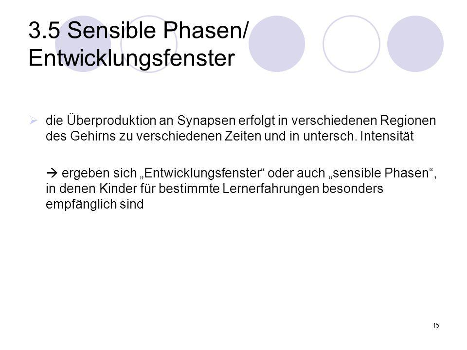 3.5 Sensible Phasen/ Entwicklungsfenster