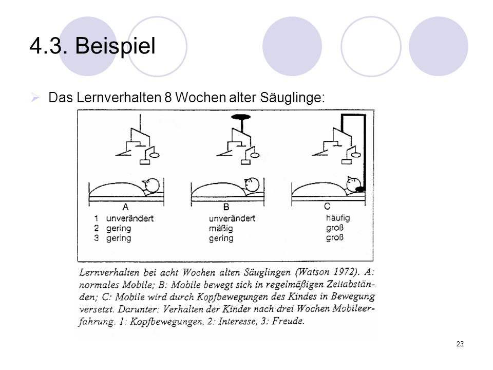 4.3. Beispiel Das Lernverhalten 8 Wochen alter Säuglinge: