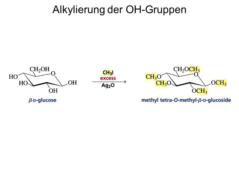 Alkylierung der OH-Gruppen