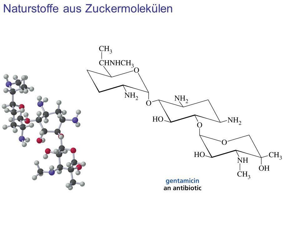 Naturstoffe aus Zuckermolekülen