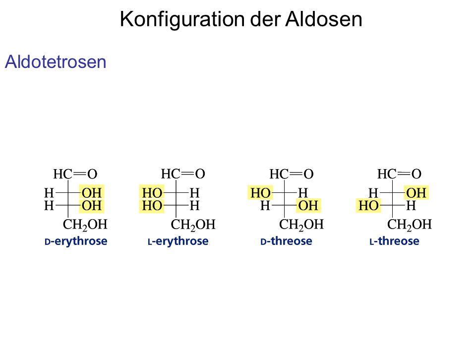 Konfiguration der Aldosen