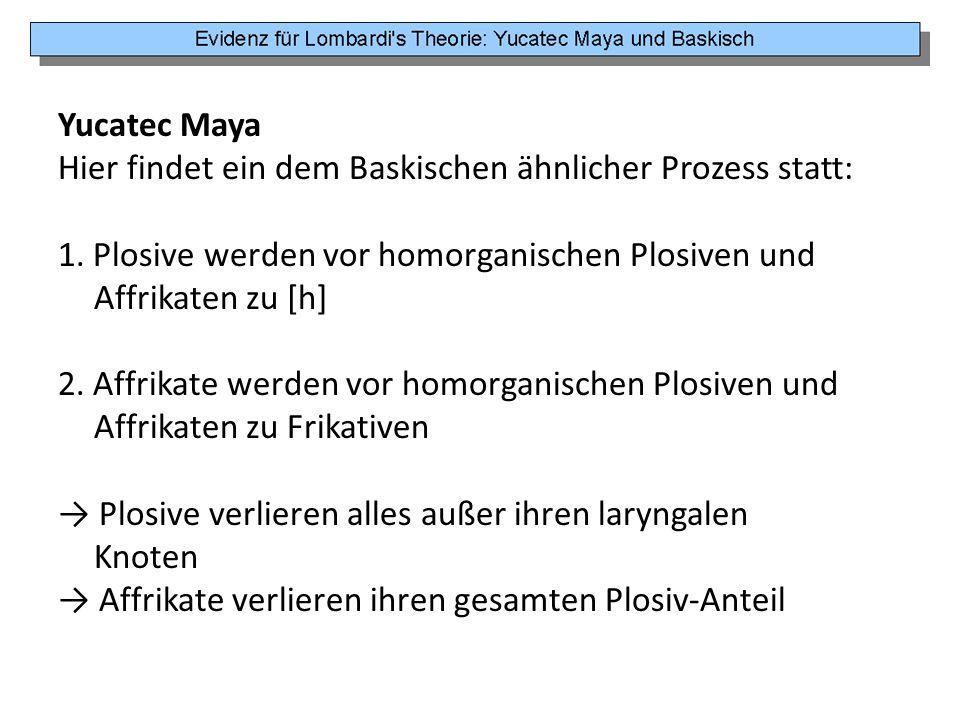 Yucatec Maya Hier findet ein dem Baskischen ähnlicher Prozess statt: 1. Plosive werden vor homorganischen Plosiven und.