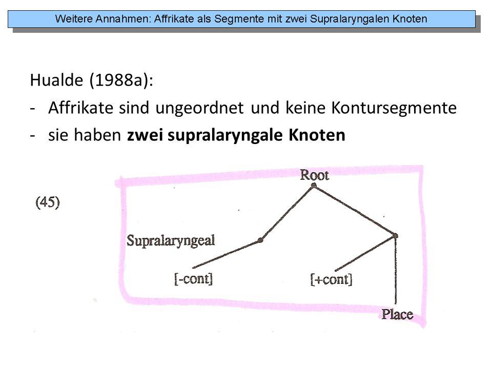 Hualde (1988a): Affrikate sind ungeordnet und keine Kontursegmente.