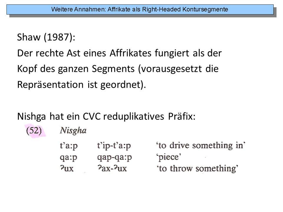 Shaw (1987): Der rechte Ast eines Affrikates fungiert als der. Kopf des ganzen Segments (vorausgesetzt die.