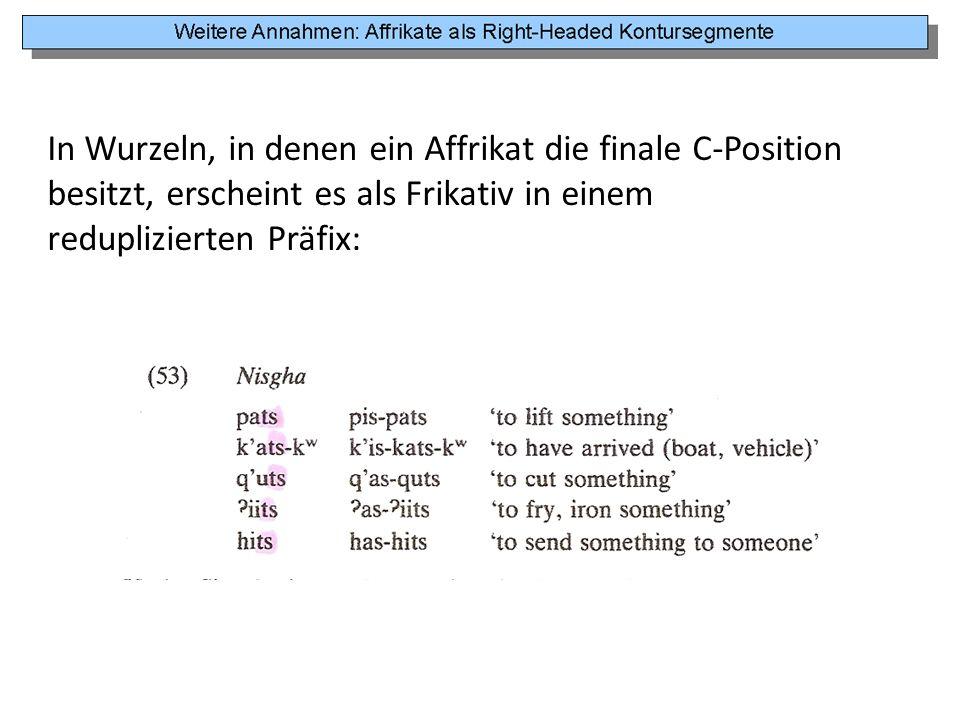 In Wurzeln, in denen ein Affrikat die finale C-Position besitzt, erscheint es als Frikativ in einem reduplizierten Präfix: