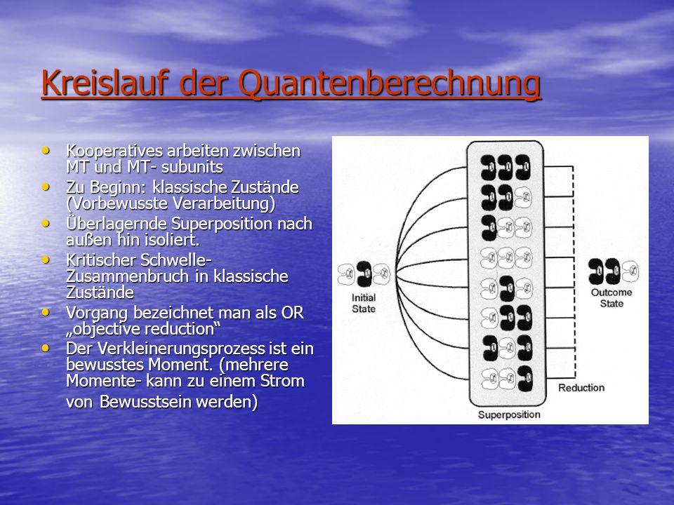 Kreislauf der Quantenberechnung