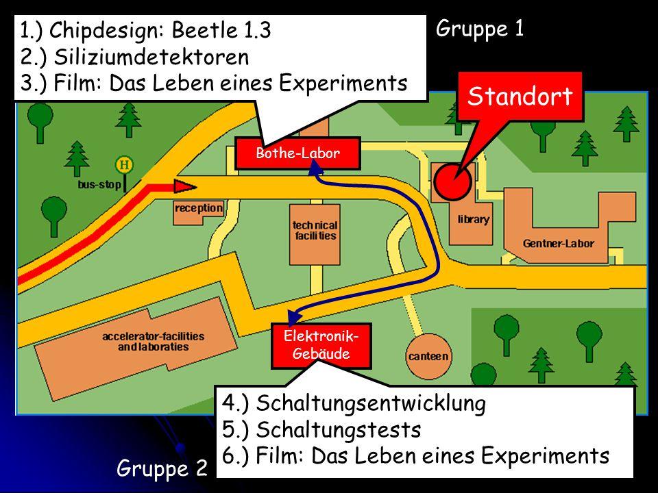 Standort 1.) Chipdesign: Beetle 1.3 Gruppe 1 2.) Siliziumdetektoren