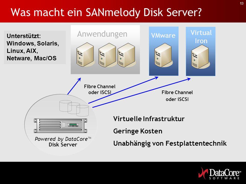 Was macht ein SANmelody Disk Server