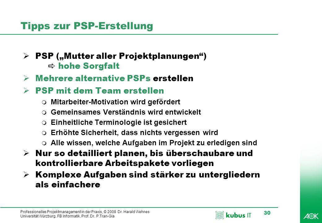 Tipps zur PSP-Erstellung