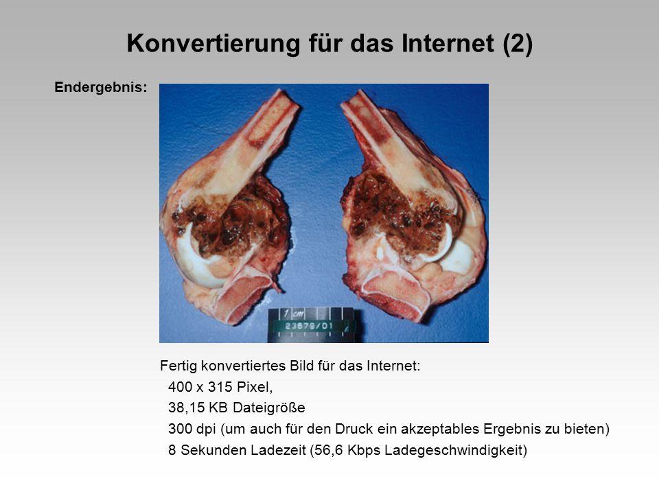 Konvertierung für das Internet (2)