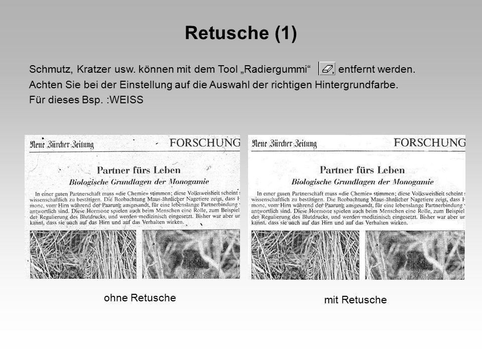 Retusche (1)