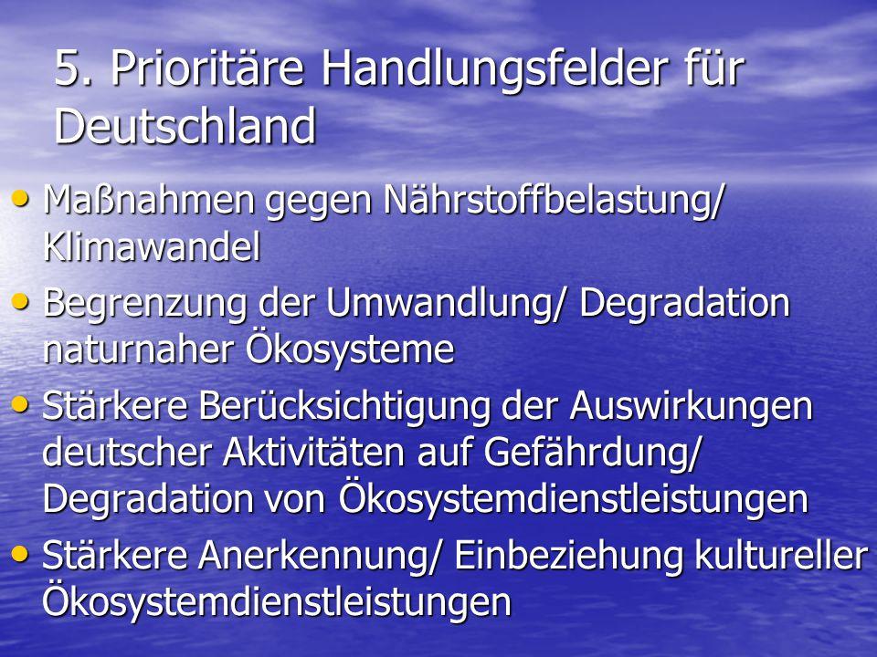 5. Prioritäre Handlungsfelder für Deutschland