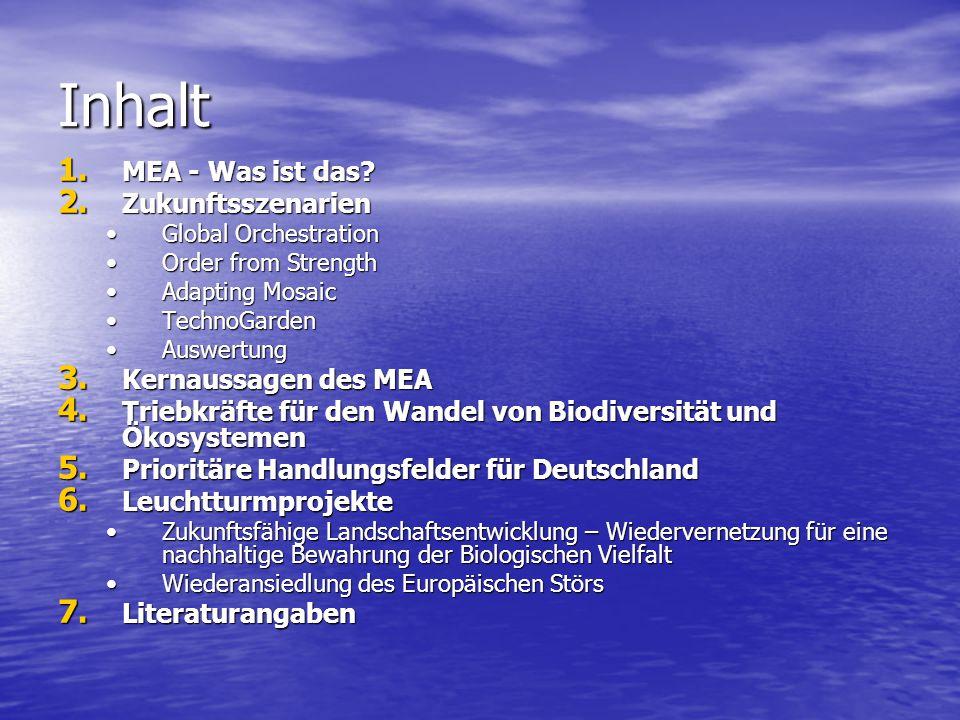 Inhalt MEA - Was ist das Zukunftsszenarien Kernaussagen des MEA