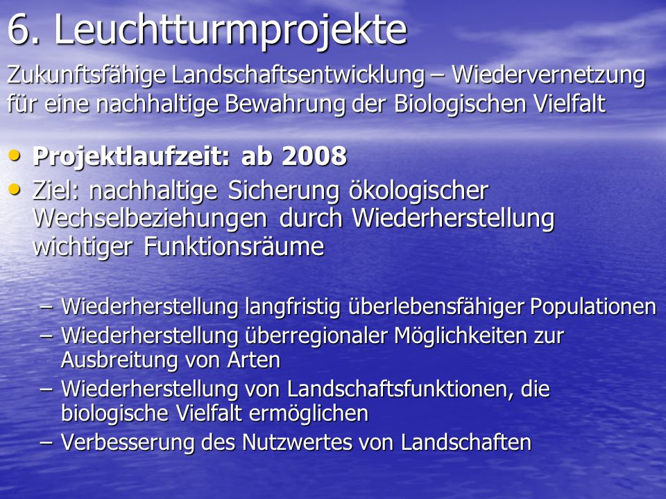6. Leuchtturmprojekte Projektlaufzeit: ab 2008