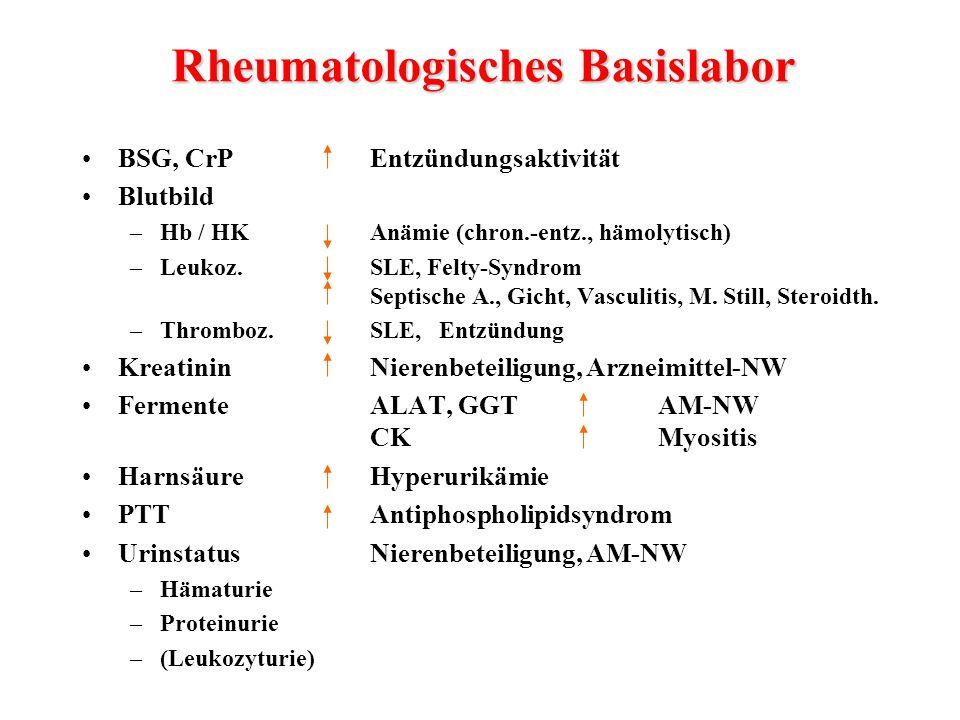 Rheumatologisches Basislabor
