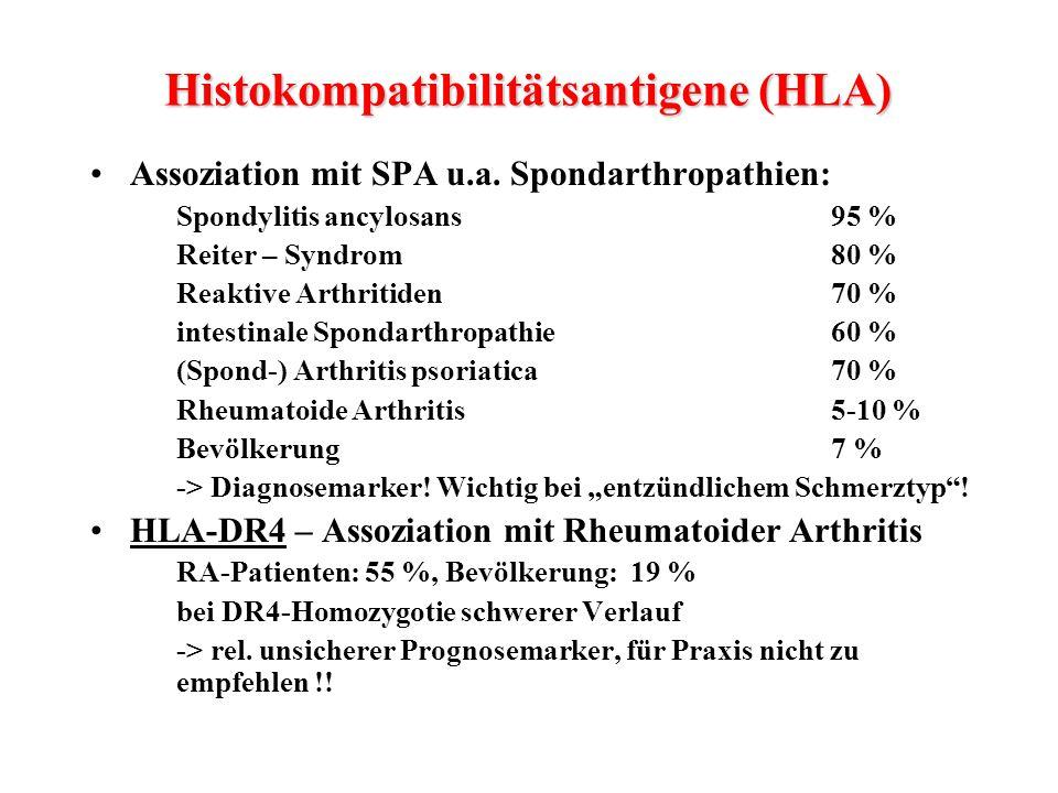 Histokompatibilitätsantigene (HLA)