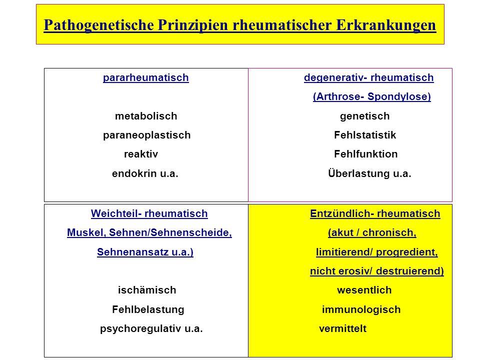 Pathogenetische Prinzipien rheumatischer Erkrankungen