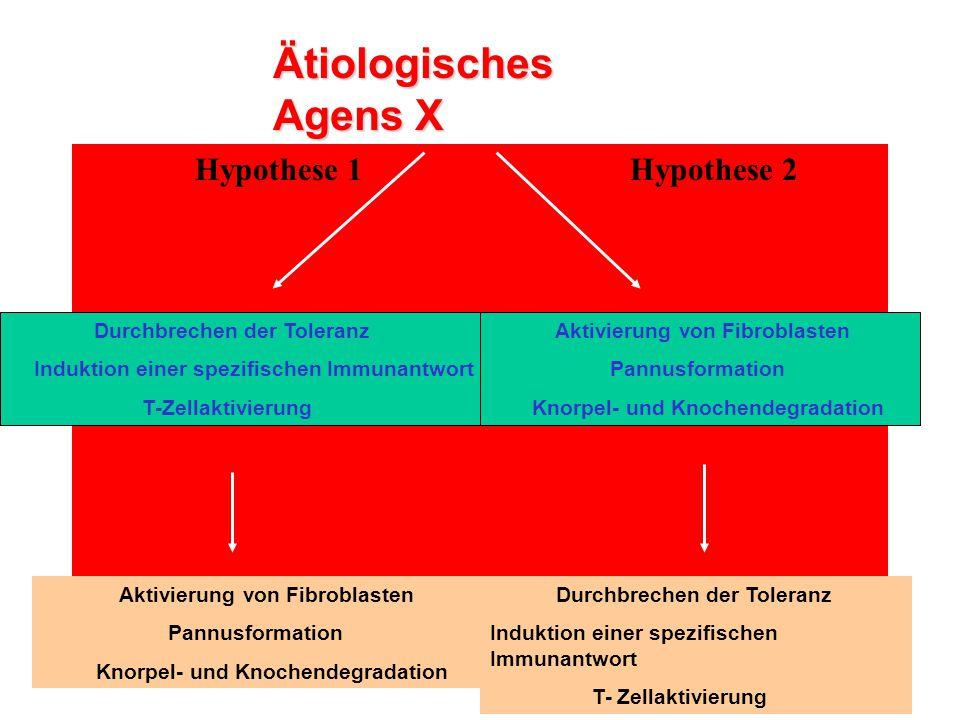 Ätiologisches Agens X Hypothese 1 Hypothese 2