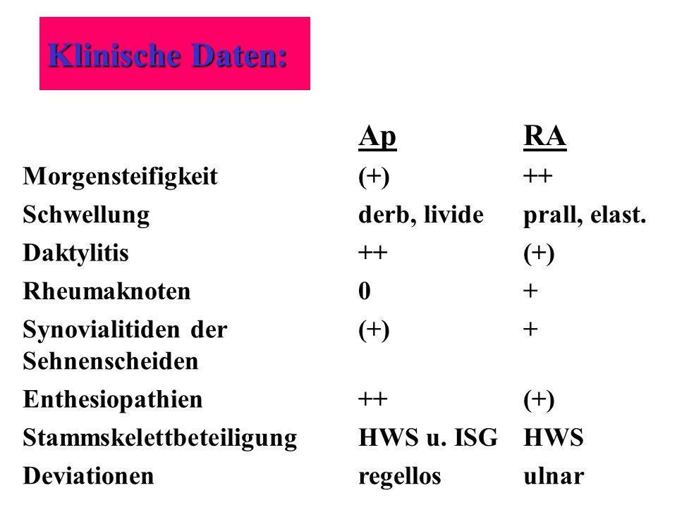 Klinische Daten: Ap RA Morgensteifigkeit (+) ++ Schwellung