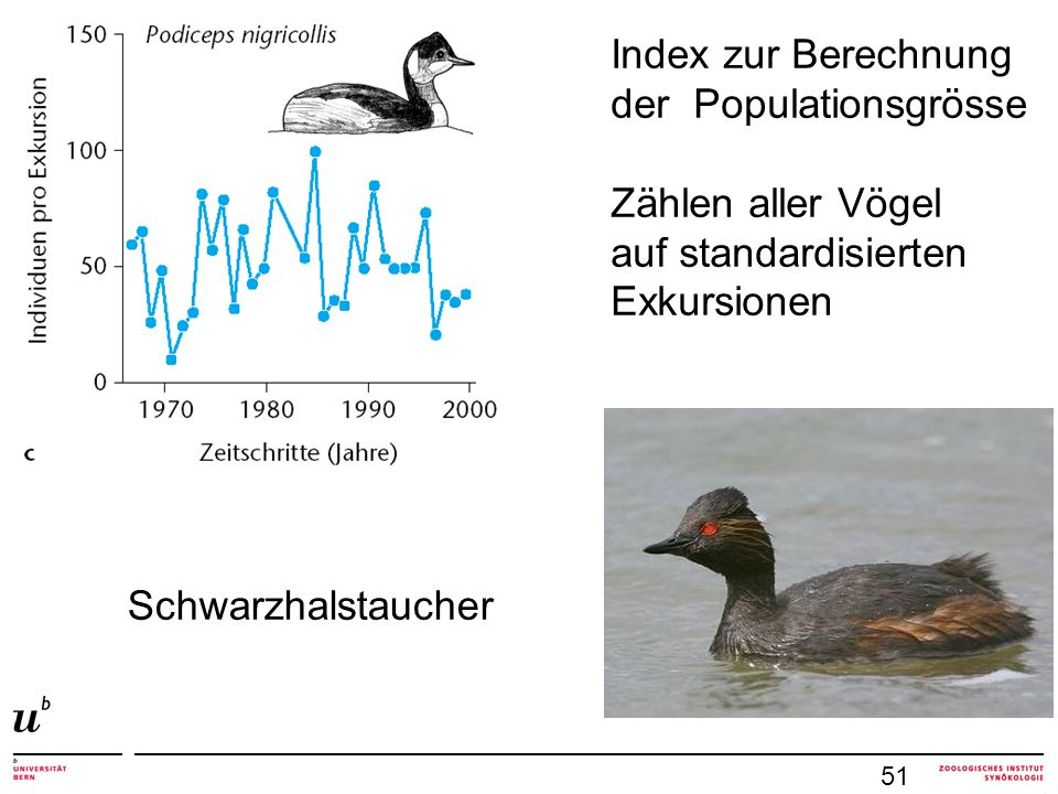 der Populationsgrösse Zählen aller Vögel auf standardisierten