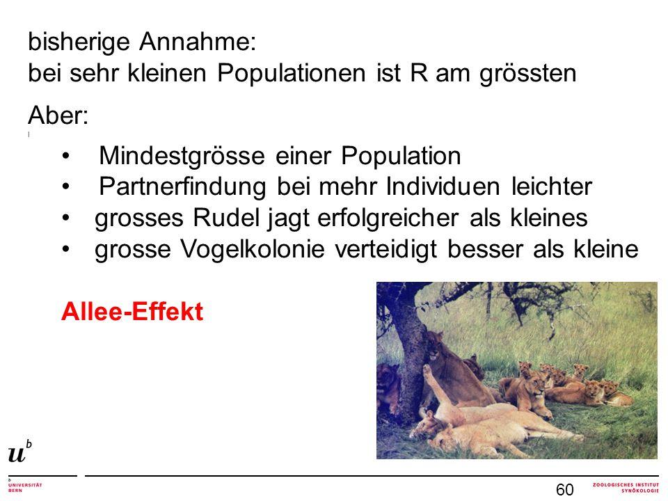 bei sehr kleinen Populationen ist R am grössten Aber: