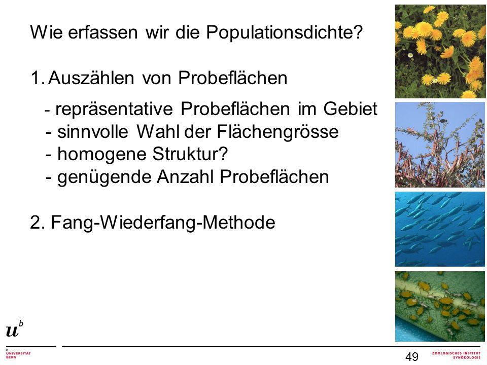 Wie erfassen wir die Populationsdichte Auszählen von Probeflächen