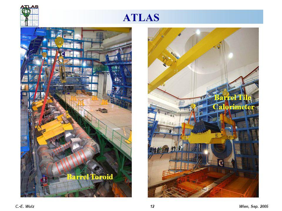 ATLAS Barrel Toroid Barrel Tile Calorimeter C.-E. Wulz