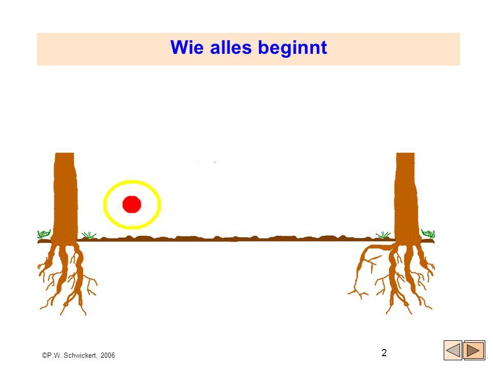 Wie alles beginnt ©P.W. Schwickert, 2006