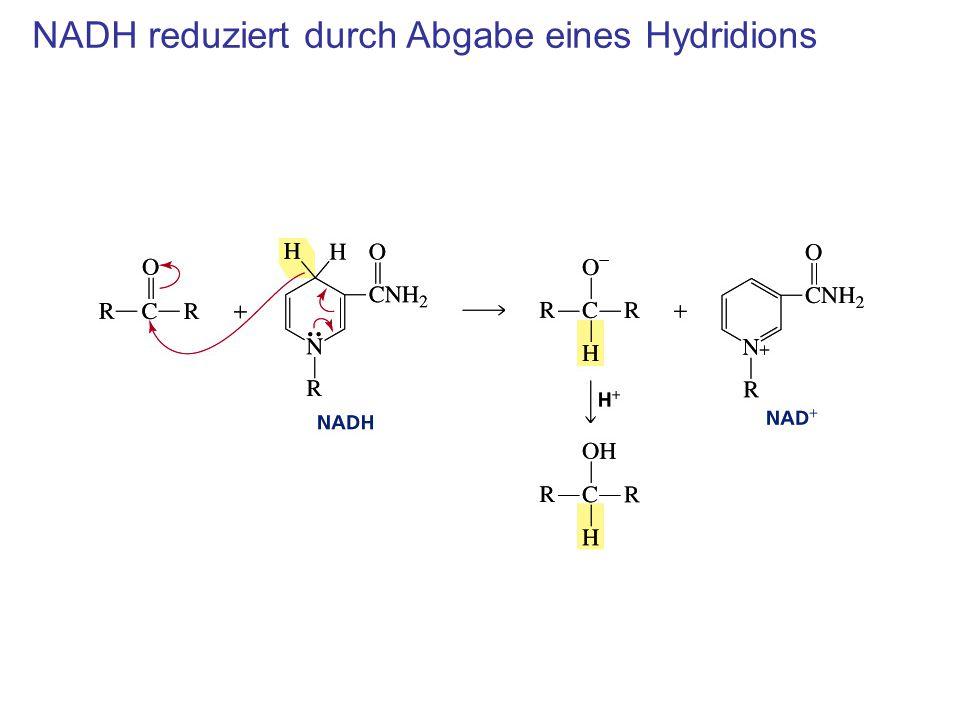 NADH reduziert durch Abgabe eines Hydridions